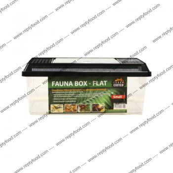 TERRA EXOTICA FAUNA BOX...