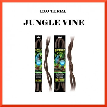 EXO TERRA JUNGLE VINES