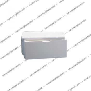 BOX POLISTIROLO 10LT