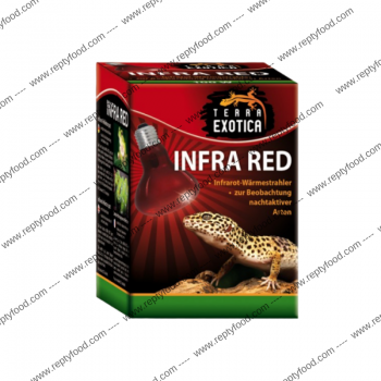 TERRA EXOTICA INFRA RED 100W